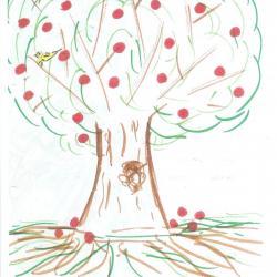 Dessin de l'arbre