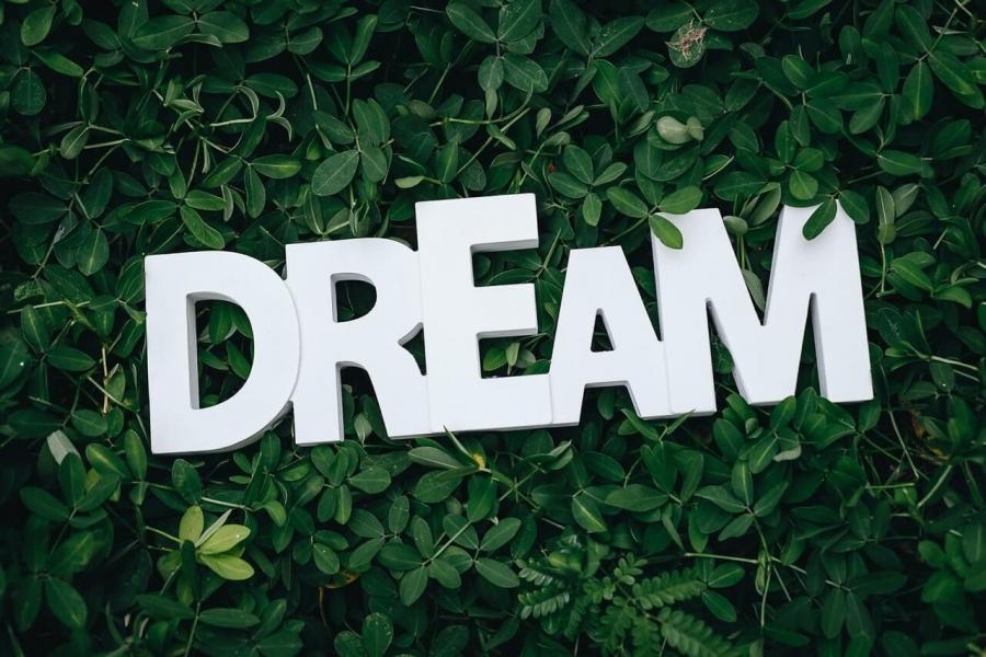 Dream text on green leaves 1535907 1